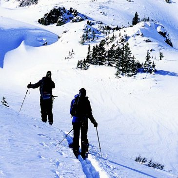Skip the Gym, Cross Country Ski Instead!